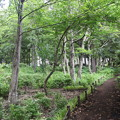 里山ガーデン