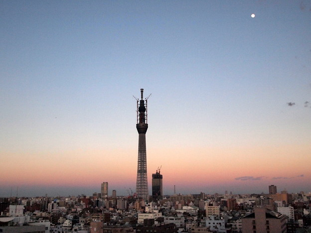 Photos: 夏の夕方の月