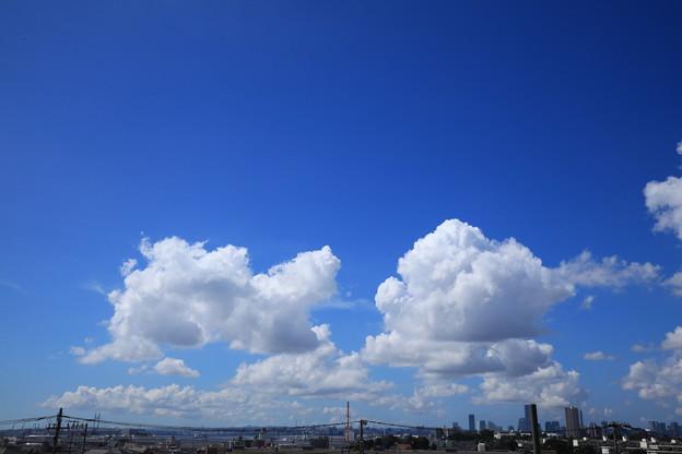 Photos: 夏空
