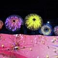 Photos: LEDパラソル