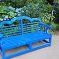 Photos: 青いベンチ