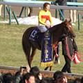 Photos: コパノリッキー_1(14/02/23・第31回 フェブラリーステークス)