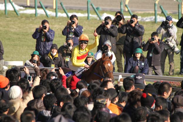 田辺 裕信 騎手(14/02/23・第31回 フェブラリーステークス)