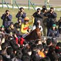 Photos: 田辺 裕信 騎手(14/02/23・第31回 フェブラリーステークス)