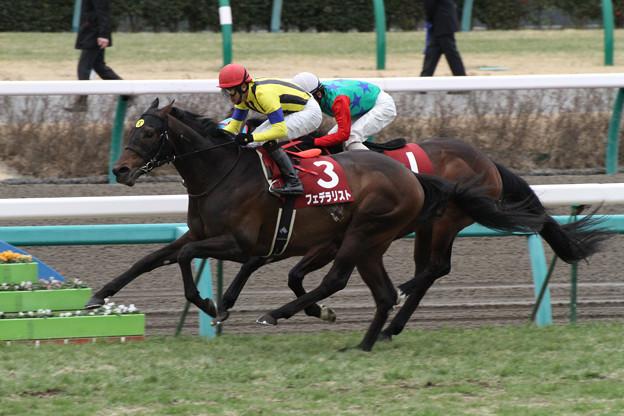 フェデラリスト レース(12/02/26・第86回 中山記念)