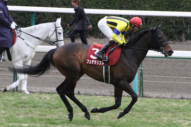 Photos: フェデラリスト 返し馬(12/02/26・第86回 中山記念)