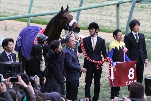 第50回 報知杯弥生賞 口取り(13/03/03)
