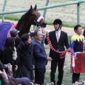Photos: 第50回 報知杯弥生賞 口取り(13/03/03)