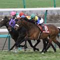 カミノタサハラ レース(13/03/03・第50回 報知杯弥生賞)