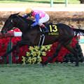 トーラスジェミニ レース(20/12/20・ディセンバーステークス)