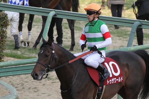 トゥザワールド レース後(14/03/09・第51回 報知杯弥生賞)