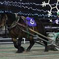 コマサンエース レース(21/02/06・如月特別)