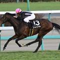 Photos: ジャコマル レース(20/12/26・グレイトフルステークス)