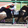 Photos: ココロノイコロ レース(20/12/26・7R)