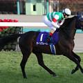 Photos: オーソクレース 返し馬(20/12/26・第37回 ホープフルステークス)