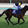 Photos: ヨーホーレイク 返し馬(20/12/26・第37回 ホープフルステークス)