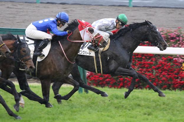 タイセイモンストル レース(21/03/28・7R)