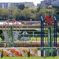 中山競馬場 ゴール板(21/04/11)