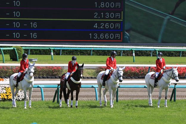 中山競馬場 誘導馬_4(21/04/11)