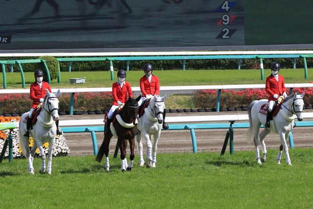 中山競馬場 誘導馬_6(21/04/11)