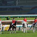 中山競馬場 誘導馬_8(21/04/11)