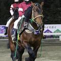 アオノブラック パドック(21/03/13・とかちマッシュ杯 第42回 ポプラ賞)