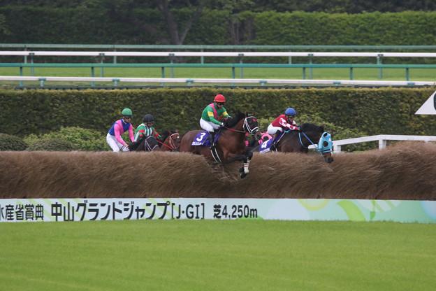 第23回 中山グランドジャンプ_2(21/04/17)