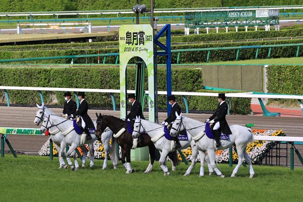 第81回 皐月賞 誘導馬_3(21/04/18)