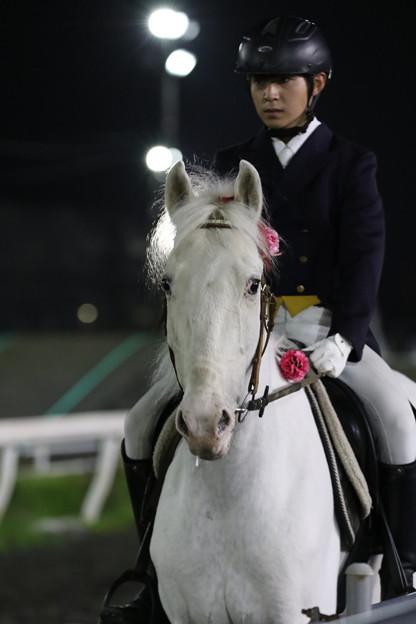 誘導馬 プリンス_3(21/05/09・第14回 カーネーションカップ)
