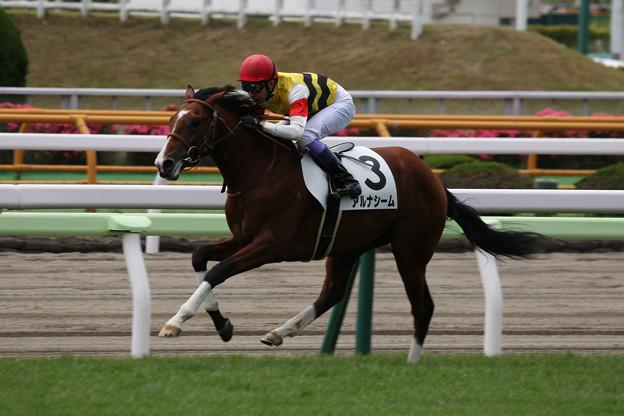 アルナシーム レース(21/07/04・新馬戦)