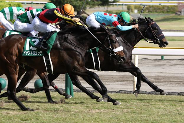 ディアンドル レース_2(21/04/24・第18回 福島牝馬ステークス)