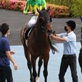 Photos: サトノエルドール_2(21/07/04・巴賞)