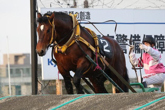 アカフジ レース(21/05/09・6R)