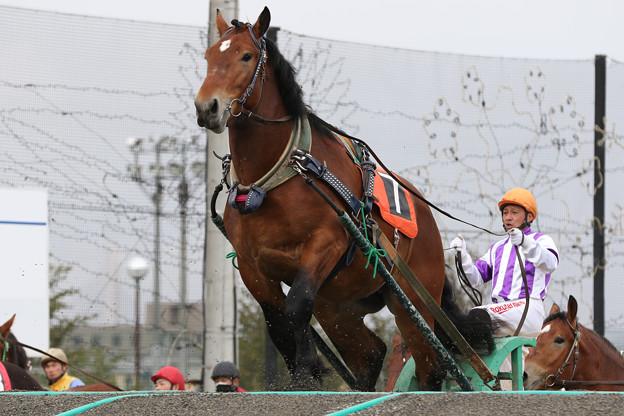 ジェイホースワン レース_2(21/05/09・新馬戦)