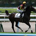 Photos: グーデンドラーク 返し馬(21/07/18・新馬戦)