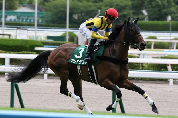アンドラステ 返し馬(21/07/18・第69回 トヨタ賞中京記念)