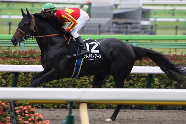 サトノティターン 返し馬(21/06/19・スレイプニルステークス)