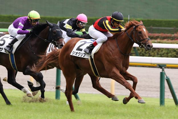 ジオグリフ レース_1(21/06/26・新馬戦)