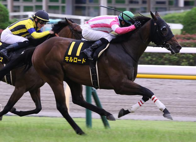 キルロード レース(21/06/27・ウッドバイン競馬場賞パラダイスステークス)