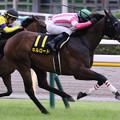 Photos: キルロード レース(21/06/27・ウッドバイン競馬場賞パラダイスステークス)