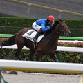 Photos: コンバスチョン レース(21/06/27・新馬戦)