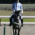 Photos: 新潟競馬場 誘導馬_7(21/07/31)
