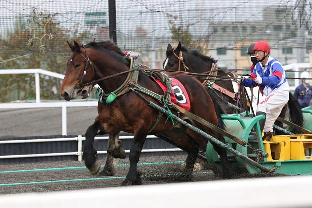 キョウエイボス レース(21/05/09・新馬戦)
