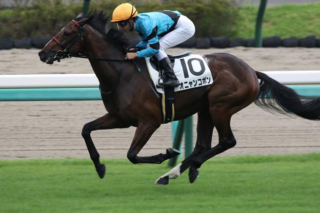 オニャンコポン レース(21/09/11・新馬戦)