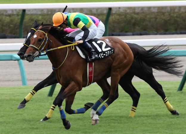 ベイビーステップ レース(21/09/25・清秋ジャンプステークス)
