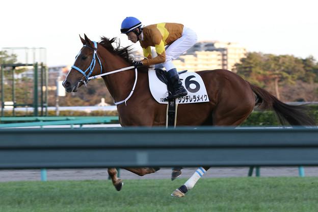 シンデレラメイク 返し馬(19/11/30・12R)