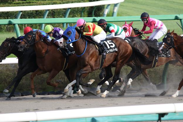 ロイヤルパールス レース_1(21/09/25・ながつきステークス)