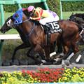 ロイヤルパールス レース_2(21/09/25・ながつきステークス)