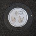 Photos: s78_狛江市マンホール_絵手紙13_出会いは宝_狛江駅南口前_t