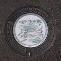 Photos: s79_狛江市マンホール_絵手紙14_鮎も泳ぐ清流多摩川_狛江駅南口前_t